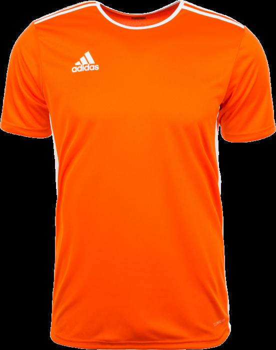 248182c76 AG Håndbold kläder och utrustning - Adidas Entrada 18 game jersey ...